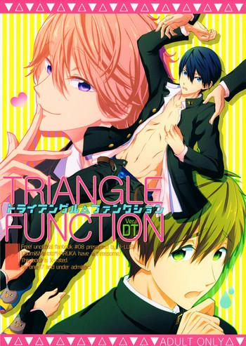 triangle function ver dt cover