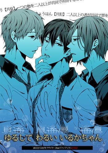yurushite warui iruka chan please forgive this bad dolphin cover